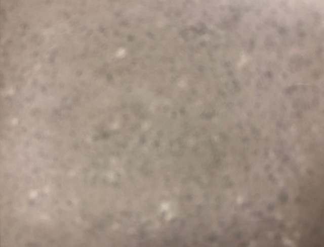 Conels grey mist worktop image